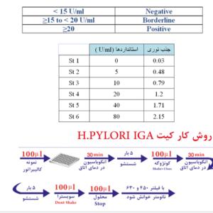 h.pylori IgA